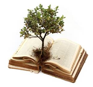 plant-growing-out-of-book