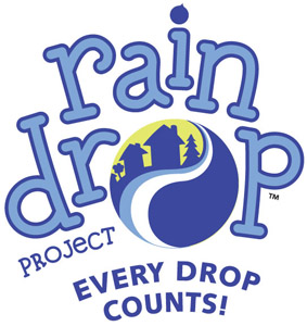 RainDrop_Project_tag_300 2